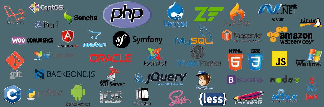 NEAR Software Ontwikkeling